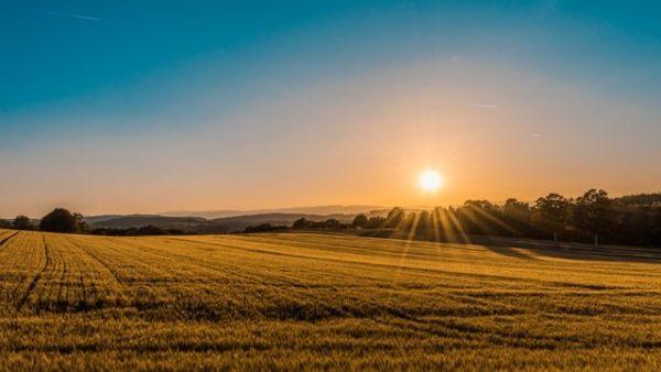 AGRATT.DE – Hilf der Landwirtschaft